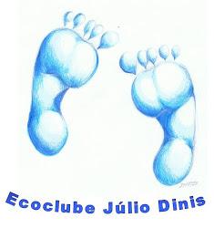 Ecoclube Júlio Dinis