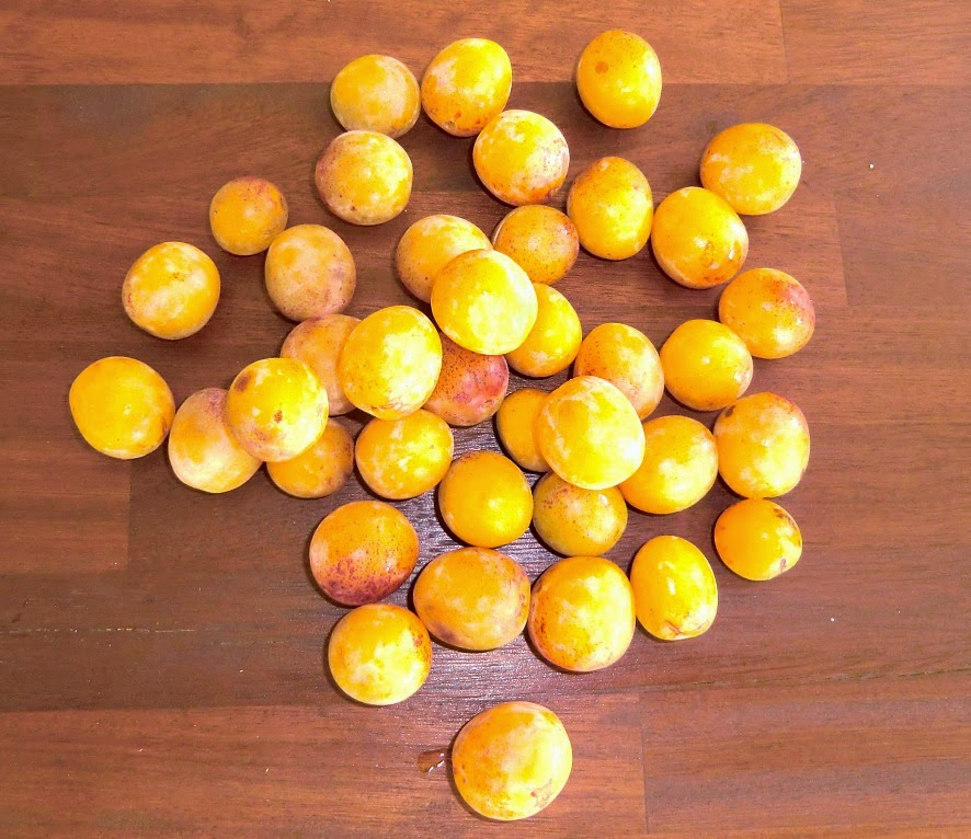 Mirabelle plums