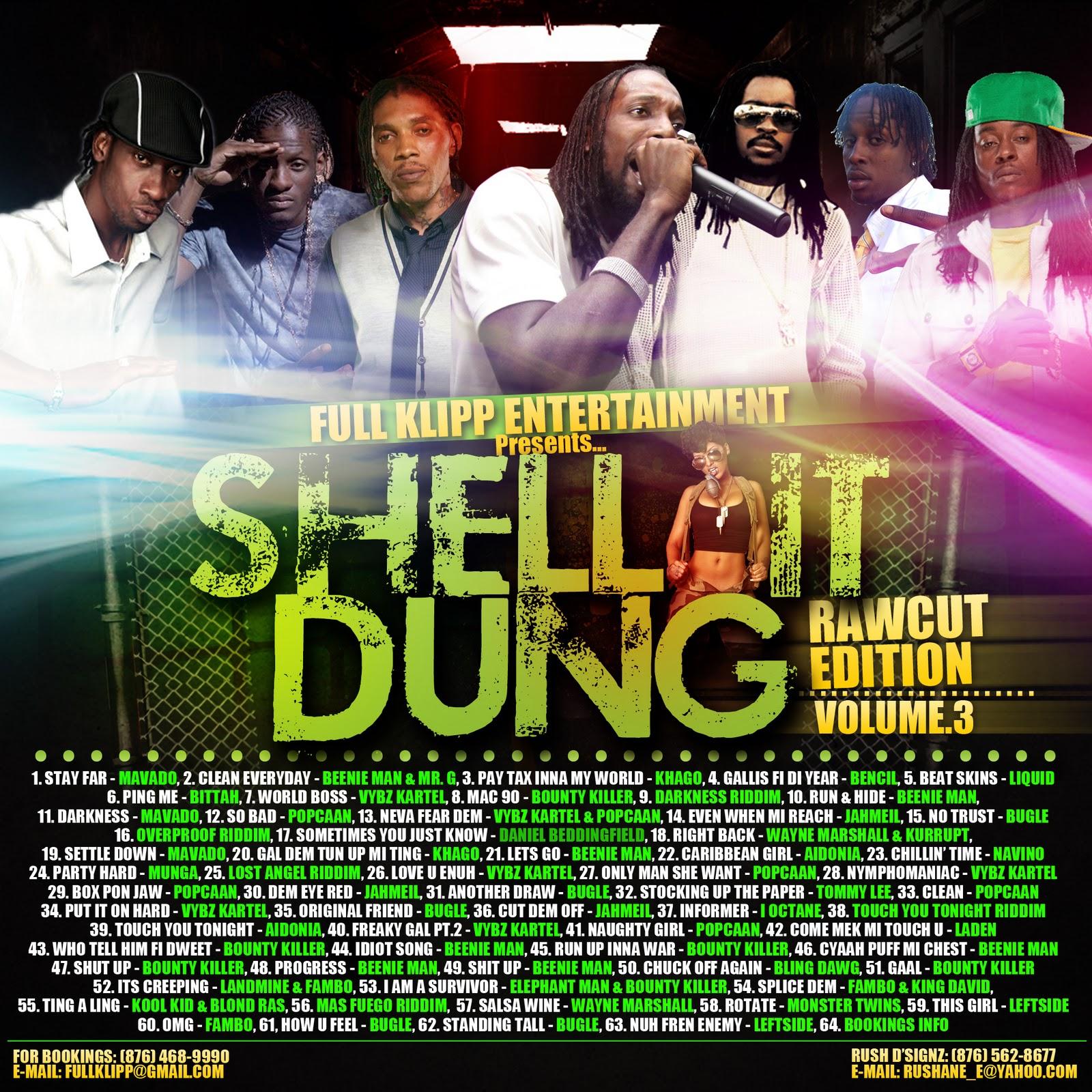 shell+it+dung+copy.jpg