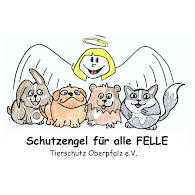 Schutzengel fr alle Felle