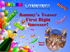 I won Sammy's Teaser!!