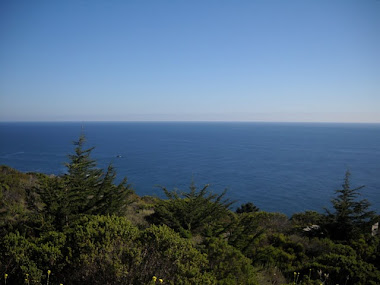 Making a Wish from Big Sur