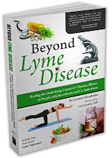 Just Published in Oct. 2012! Beyond Lyme Disease