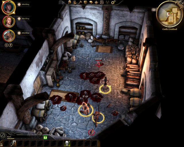 Dragon Age Origins human noble origin fighting rats