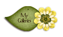 My Galleries