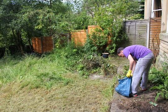 clear garden debris