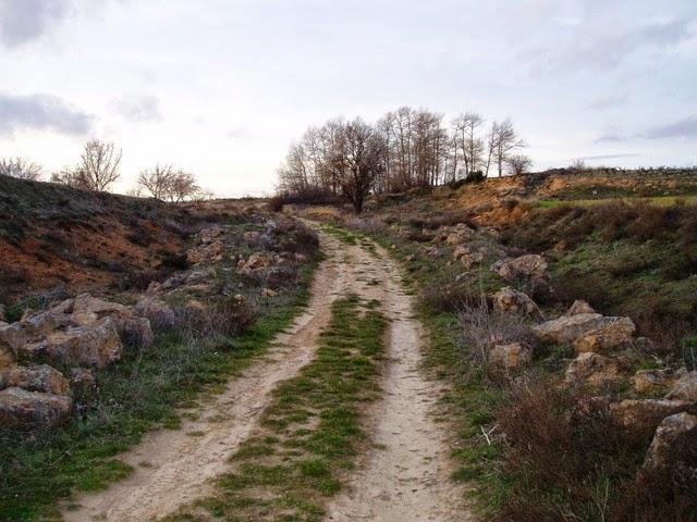 camino rural en suave pendiente hacia arriba aparentemente hacia ninguna parte