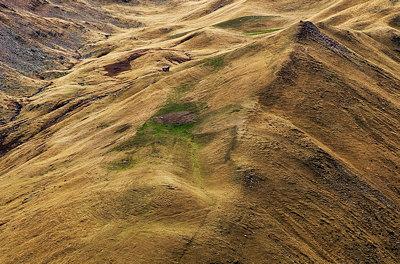 Alpine meadows in autumn