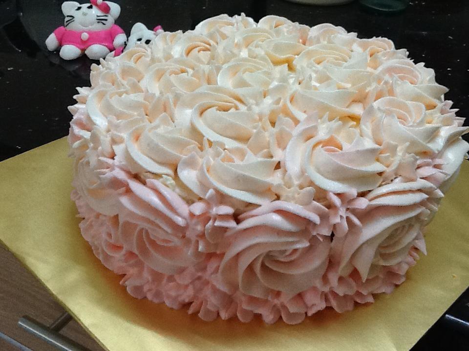 Baby Girls Diary Happy Birthday to MSLS