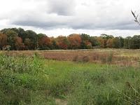 Rehoboth Land Trust