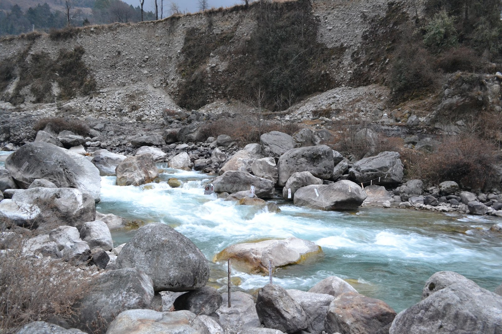 Teesta river at lachung