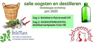 Salie 2 daagse workshop