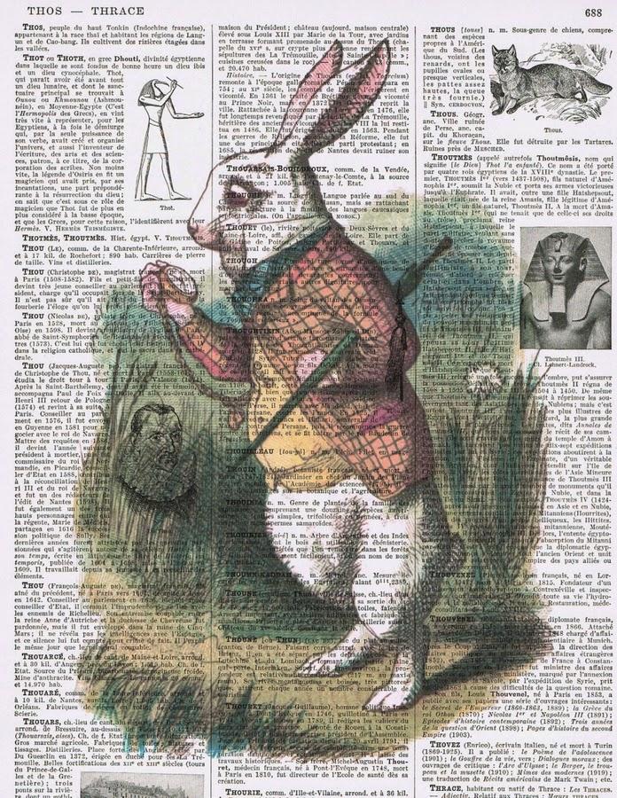03-White-Rabbit-2-Jackie-Bassett-studioflowerpower--www-designstack-co