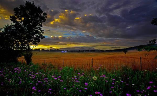 Scenic Country Farm