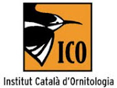 Ornithocat
