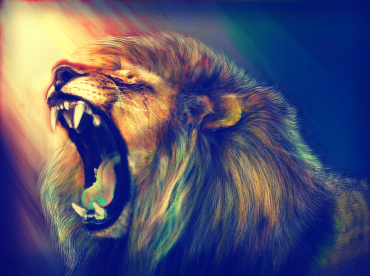 animal lion wallpapers