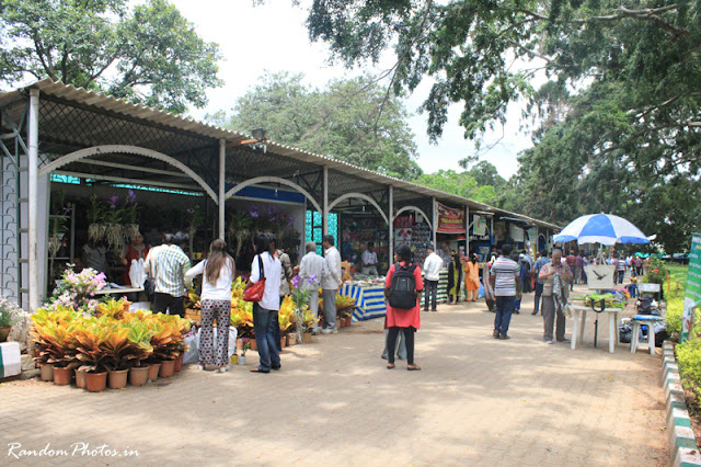 Lalbagh Stalls