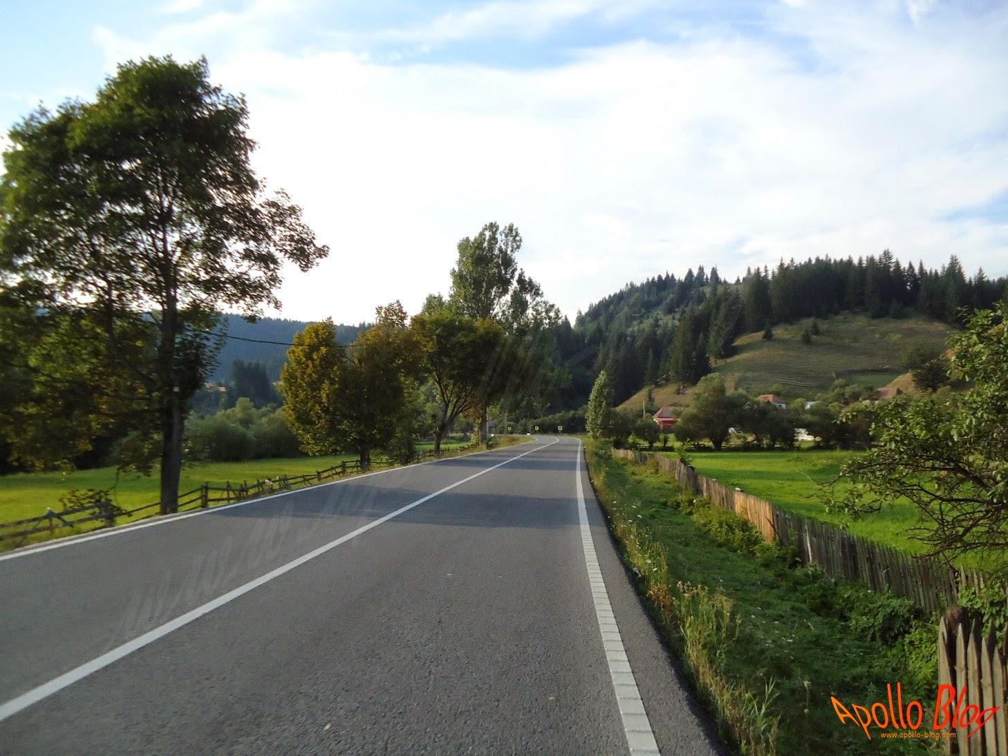 Vagani