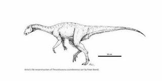 Thescelosaurus assiniboiensis, Dinosaurus Vegetarianz