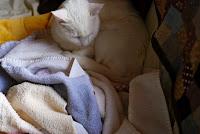 warm laundry