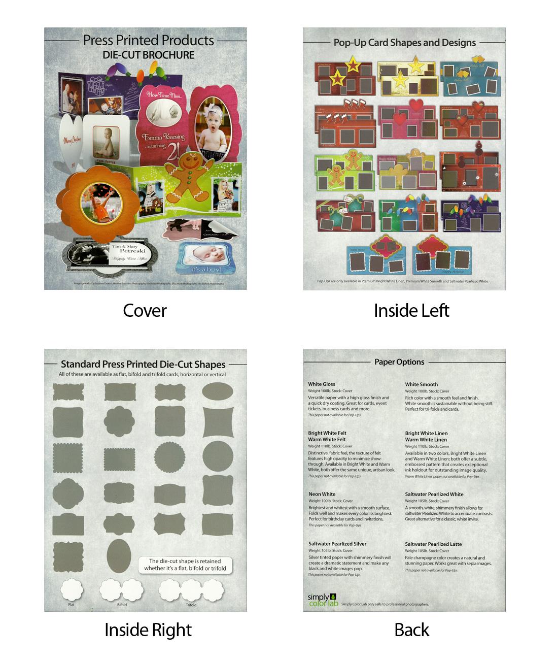 Alexis moulds portfolio simply color lab press brochure reheart Gallery