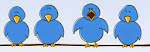 Stephane Tweets ::::: Click Birdies