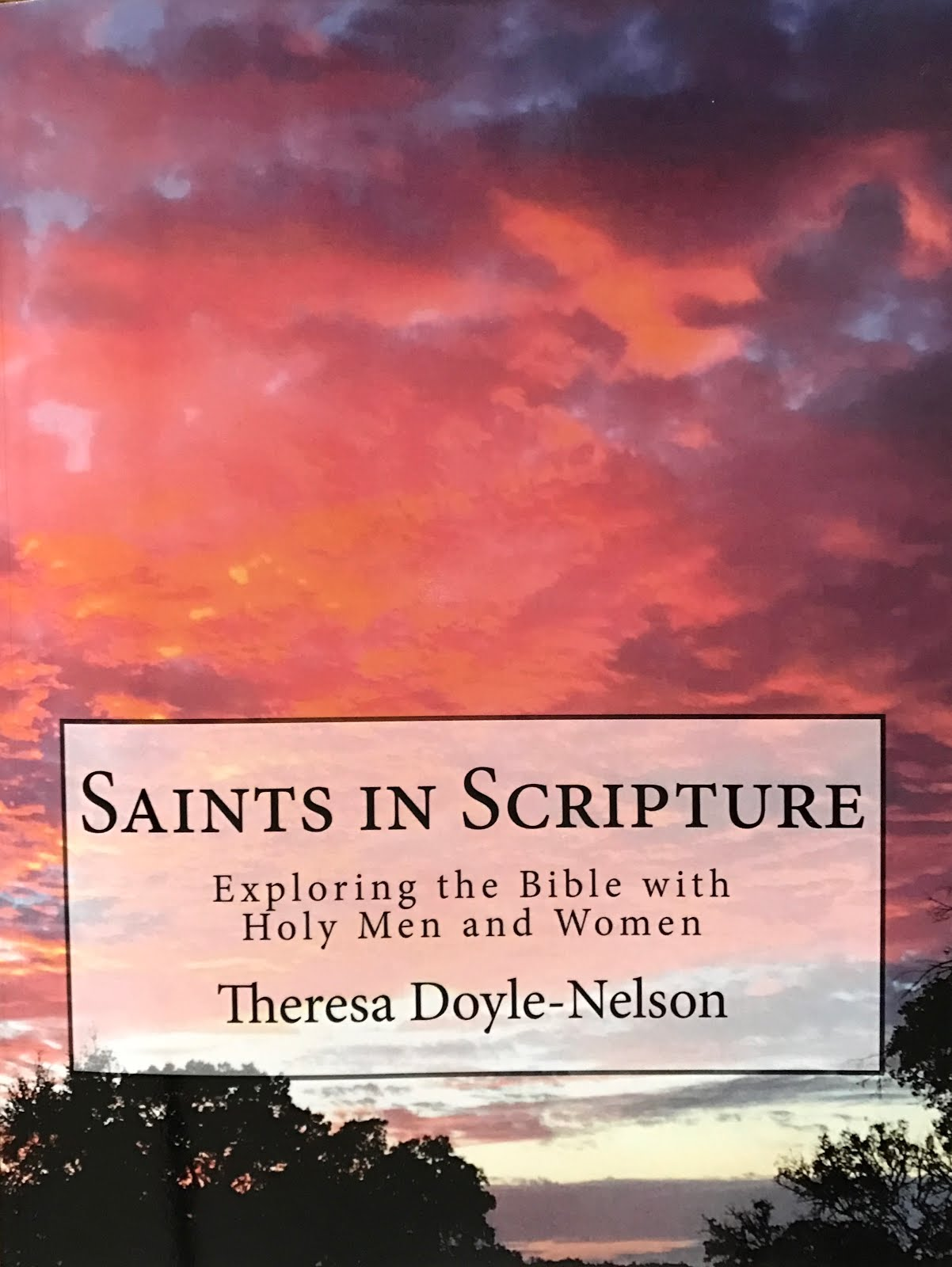 My New Book: Saints in Scripture