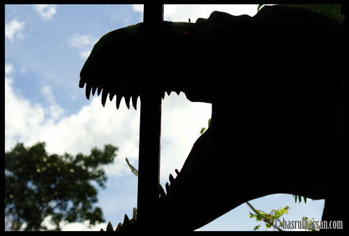 Wordless Wednesday #WW - Dinosour Di Laman Rumah !
