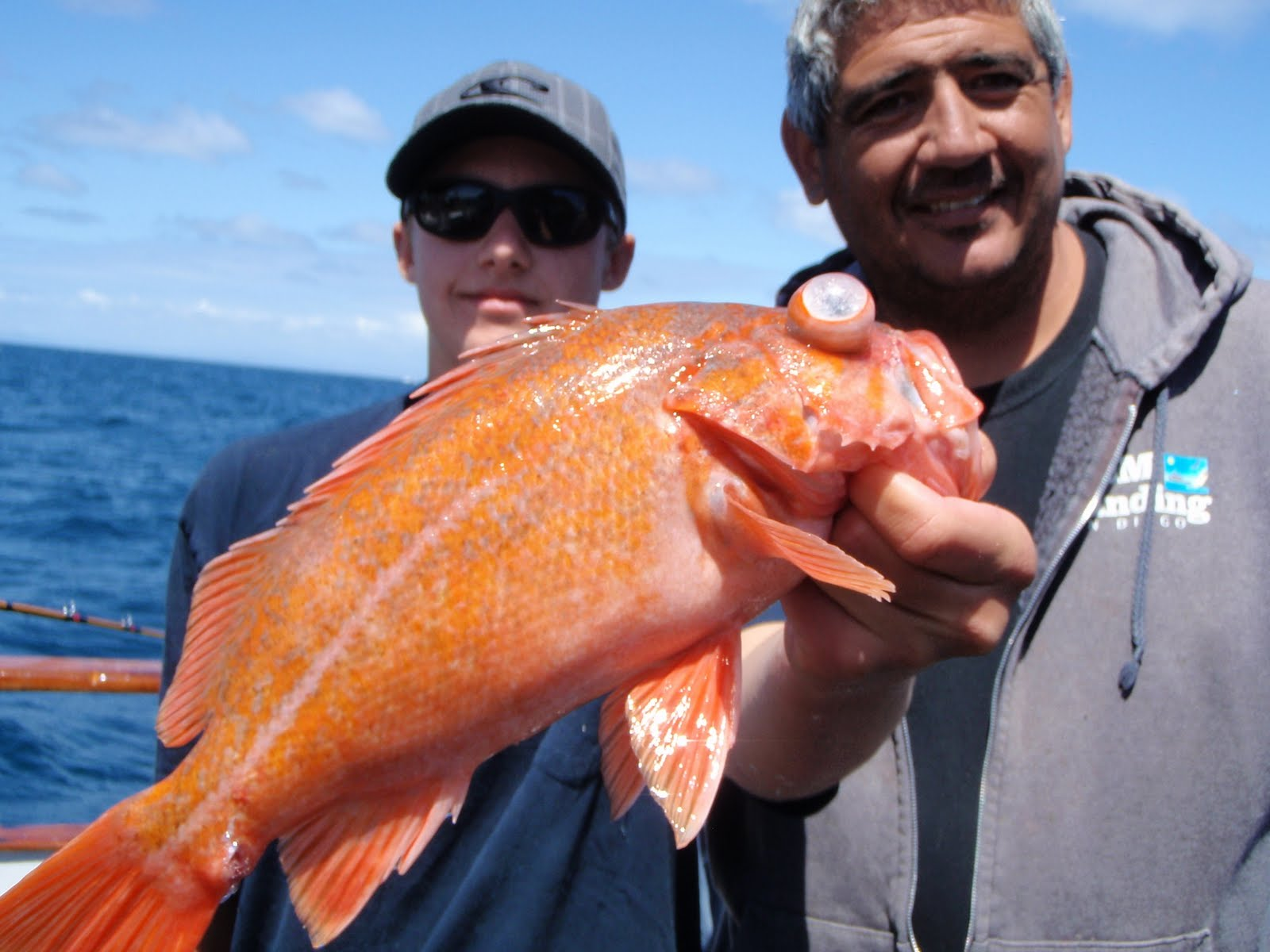 Dan 39 S Journal Doliphin Ii Fishing Report