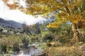 Río Fardes