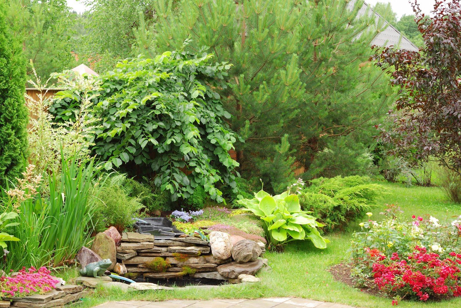 Fotos de jardines hermosos imagui for Plantas pequenas para jardin
