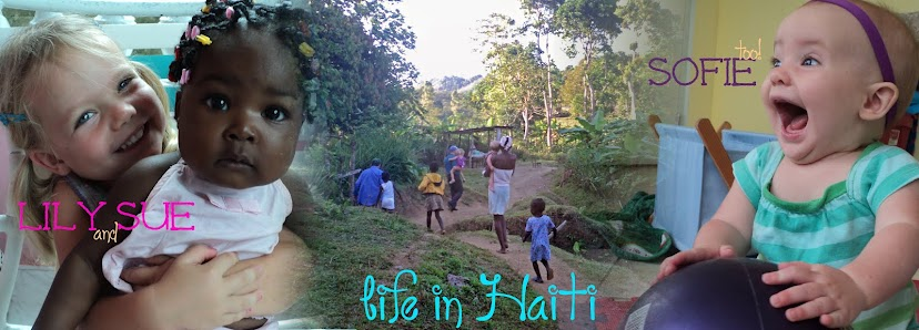 lily sue and sofie, too : life in Haiti