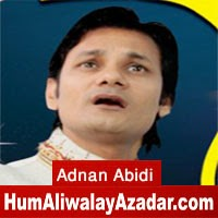 http://72jafry.blogspot.com/2014/06/adnan-abidi-manqabat-2014.html