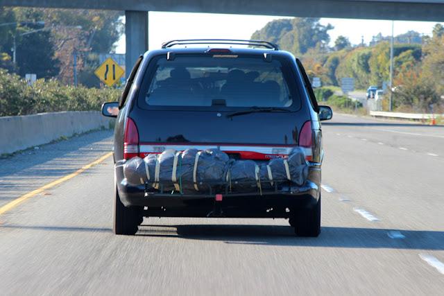 Como transportar o seu cunhado em viagens de carro