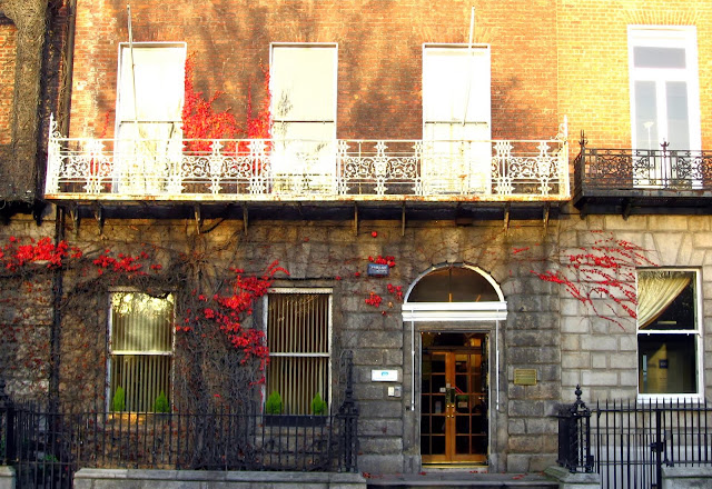 Pretty building with stunning red vines, Dublin, Ireland