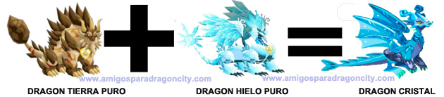 como sacar el dragon cristal combinacion 1