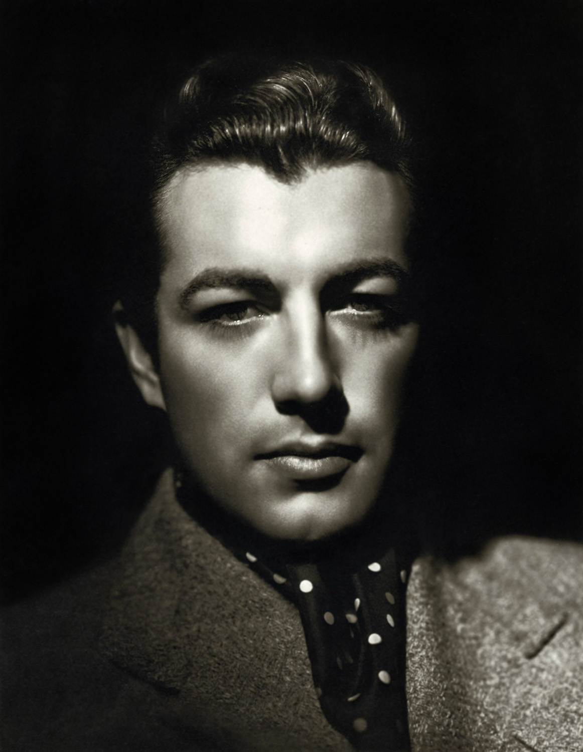 Robert Taylor Net Worth
