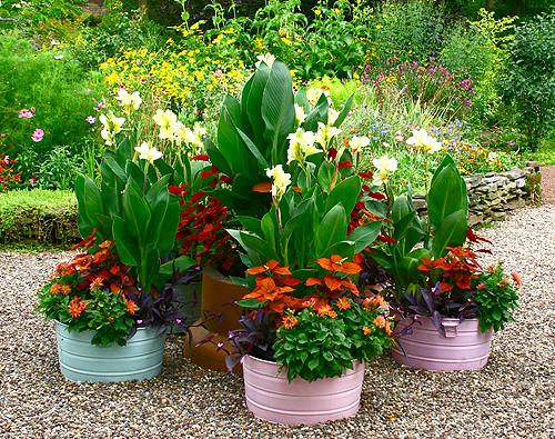 sure fit slipcovers creative garden