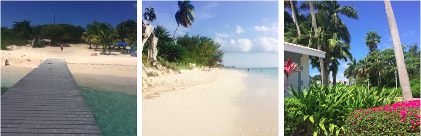 beach, Caribbean, Grand Cayman, holiday, lifestyle, travel, turtles,