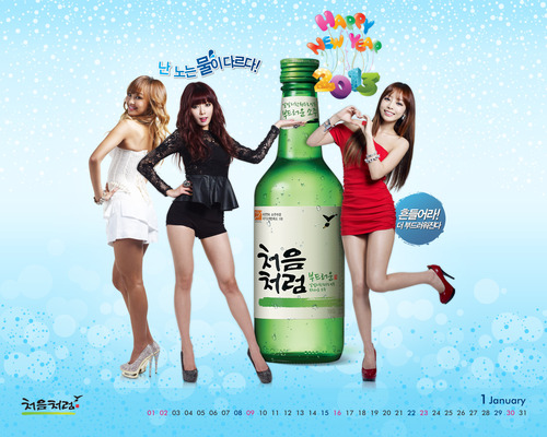 SEXY GOO HARA for FIRST SOJU Official Pic