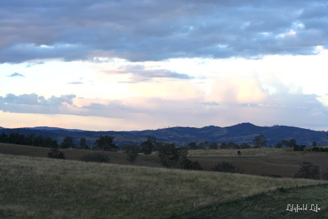 Countryside in Eden Monaro