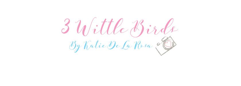3 Wittle Birds