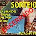 KIT COM 3 SHAMPOOS EM BARRAS - SORTEIO SEMENTES DE GAIA