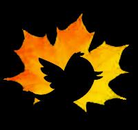 OoakCraft en Twitter