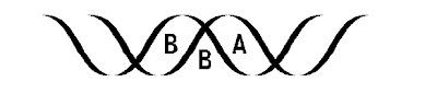Bangladesh Bioscience Associates Logo