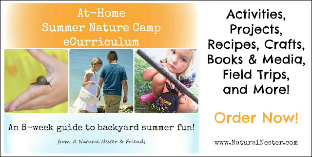 Nature E-Summer Camp