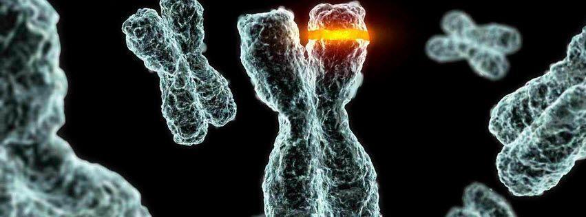 Resultado de imagen de alteracion cromosoma