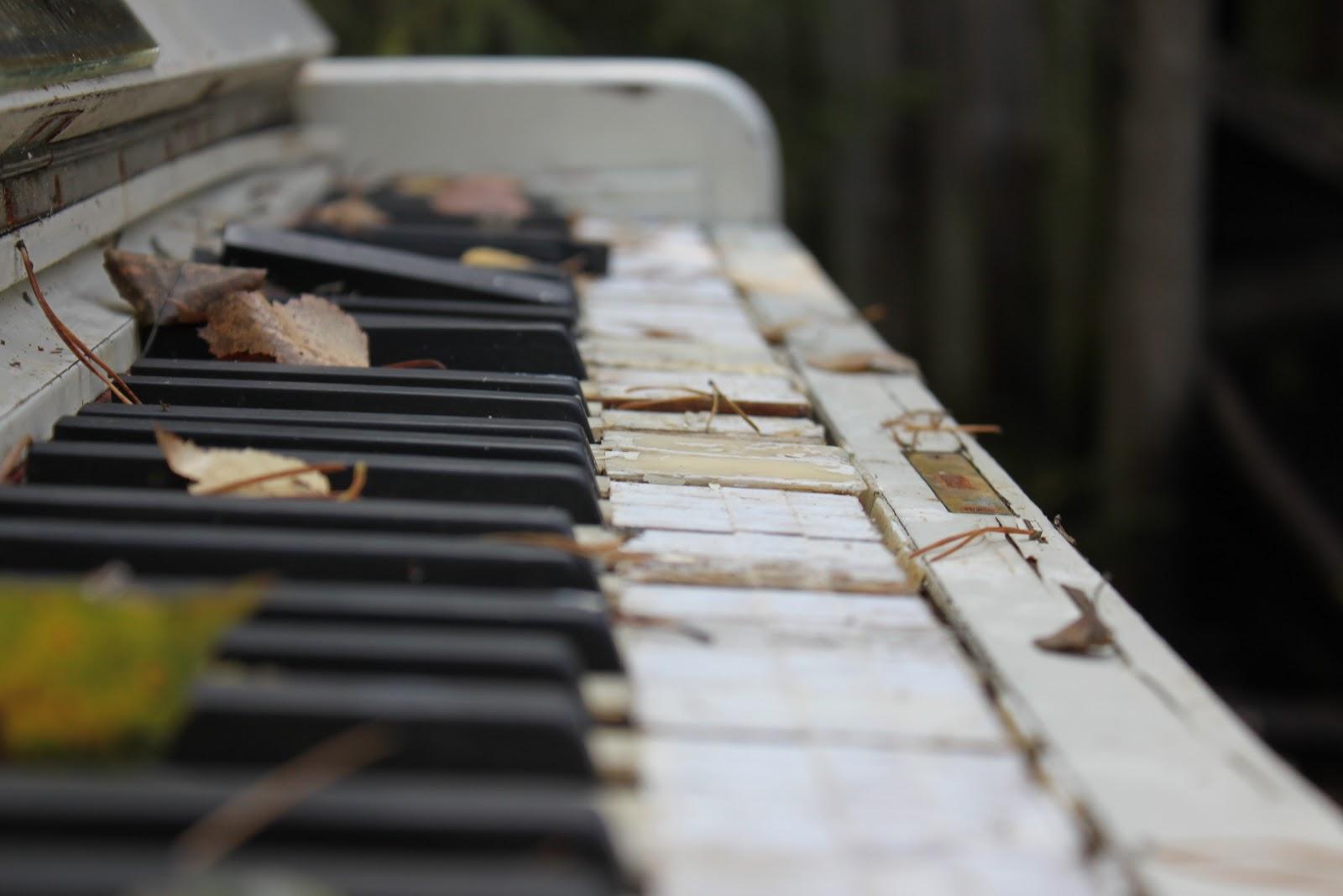 http://1.bp.blogspot.com/-AYIfdZpLxgg/UN8dOCQAFvI/AAAAAAAABdo/HkBt2JMyAg8/s1600/Old+Musical+Instrument+Pictures.jpg
