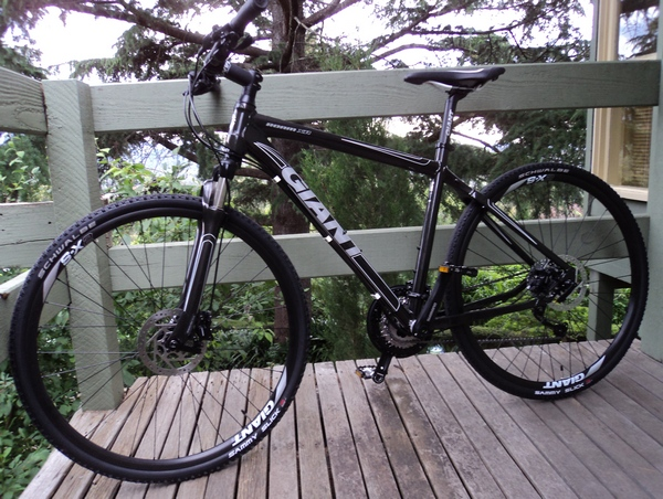 The Experience Giant Roam Xr1 Bicycle Review
