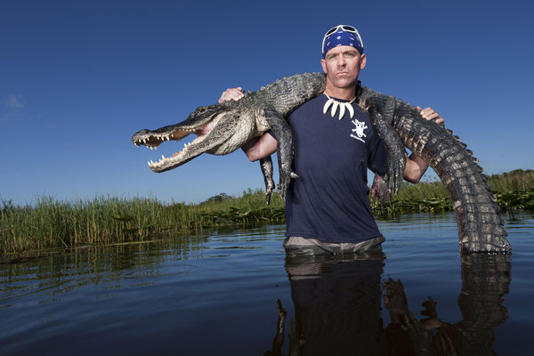 happen to wander in florida they bring the gators back to their